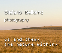 Stefano Bellomo photography